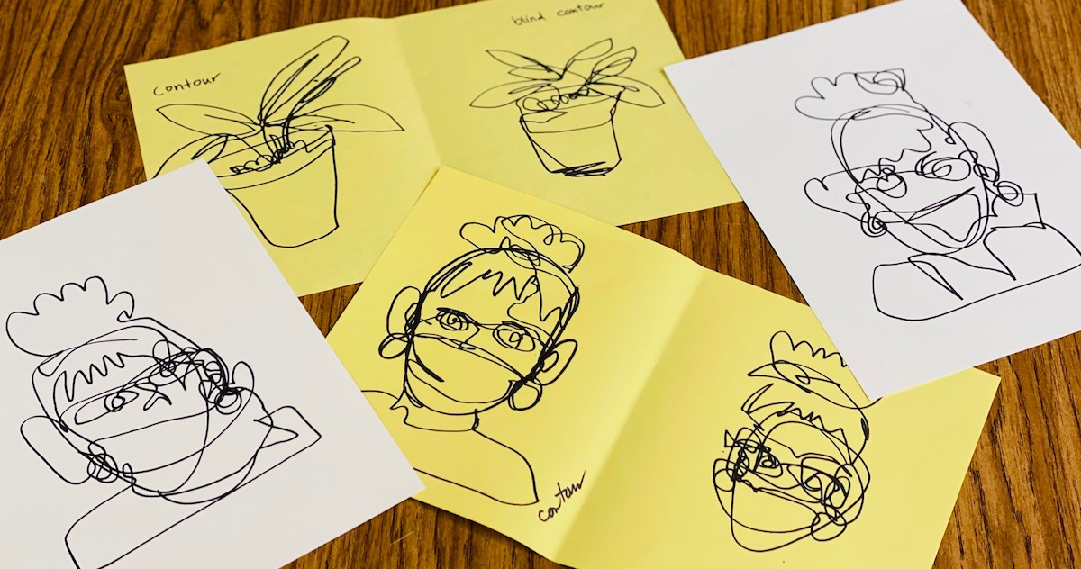 contour drawings