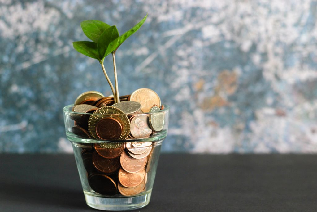 glass filled with money and a plant growing